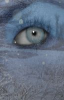 Ice Eye by Slayer-of-all-Evil