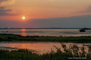 The Marsh at Sunrise 2 by vincepontarelli