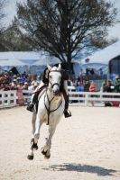 Rolex09 ShowJumping 71 by zeeplease