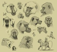 Baboons by Entropician