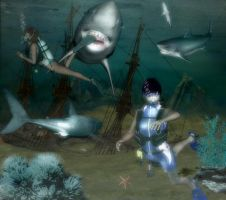 shark attack by sweetpoison67