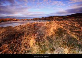 Morning Light - Arisaig by DL-Photography