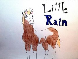 Rain as a Foal by Horsebug