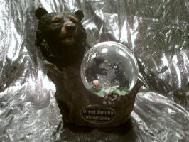 Great Smoky Mountains Bear Snowglobe by Avi-the-Avenger