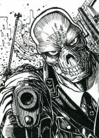 Red Skull ATC Inks by DKuang