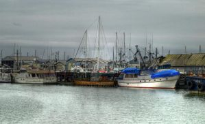 Boats by Stolte33