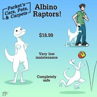 Dream: Albino Raptors by Hexaditidom