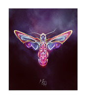 Moth by kybel