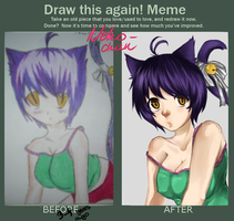 Improvement Meme - 2008-2012 by SpaceMink