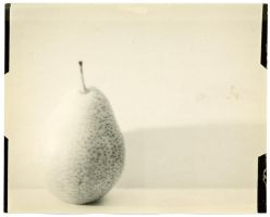 pear in white by thesadstork