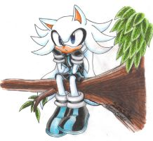 Art Trade: Cloy the Hedgehog by SupaSilver