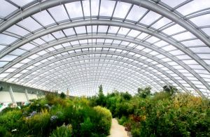 Wales Botanic Garden by nectar666