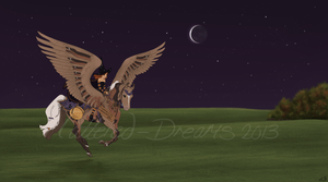 Coping with the Broomstick Ban by Tattered-Dreams