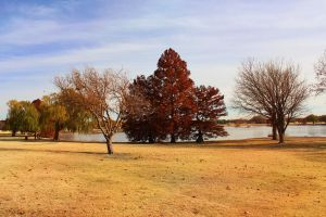 Another view of Fall by Sherjaxon