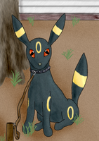 Umbreon by Terra-Truesdale