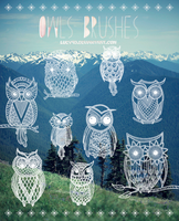 Owls-Brushes {Abr Files} by Lucy9o