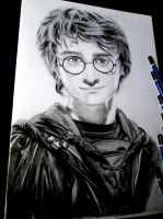 Harry Potter by kjviray