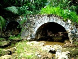 Spanish Bridge Guam Jungle Seti Bay by spidermonkeykiss