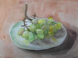 Grapes study watercolor by SatenkoDmitry
