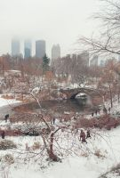 Central Park Winter by Adrianna-Grezak
