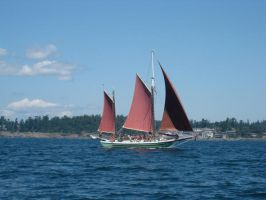 sail 2 by lostock
