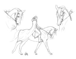 Equine study by YOB