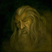 Gandalf the Grey by jezebel