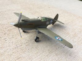 Curtiss P-40 Pearl Harbor Tribute by Jetster1