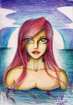 Little Mermaid by amandioka