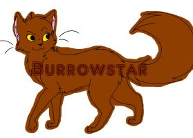 Burrowstar by press-paws