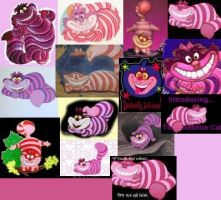 the Cheshire cat by lost-heart-lost-love