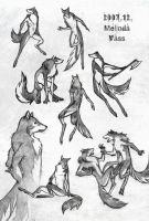 Werewolf movement sketches by WhiteRaven90