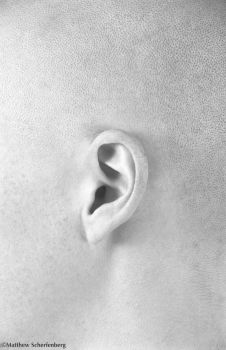 Ear by Mfenberg