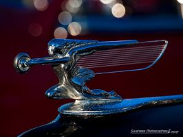 Angel in Chrome [1] by Swanee3