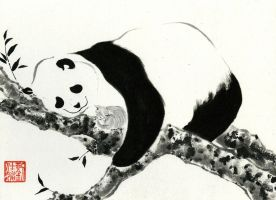 Panda Snuggles by catherinejao