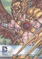New 52 - Hawkman by dixey