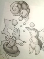 Treeko, Squirtle, Cyndaquil by Adolessence