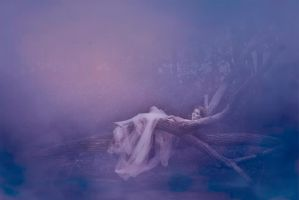 Ethereal dream by Druids125