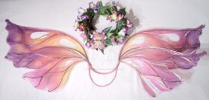 Amazing Fantastic Fairy Wings by FairyberryBlossoms