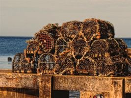 lobster pots by awjay