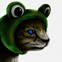 Frog cat by iria3