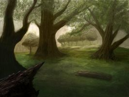 Enchanted Forest by Narandel