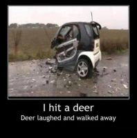 Why i Hate Smart cars. by Hellomon100