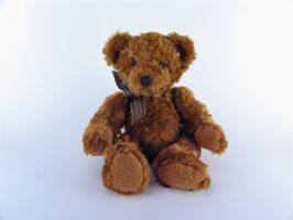 Stock - Teddy Bear Series 1 by mystockphotos