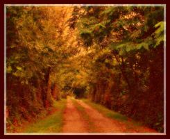 Path in the village by VesnaRa14