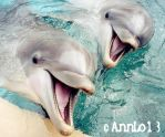 Two cute dolphins by annlo13