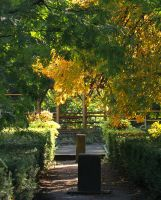 Autumn in the botanical garden by starykocur