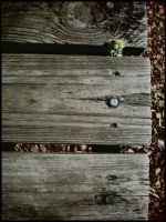 Broken into Thirds. by BeckyMarie73