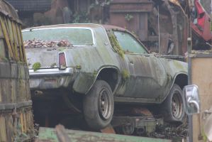 Going nowhere fast by finhead4ever