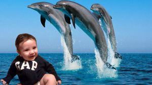 My baby and the Dolphins by Topas2012